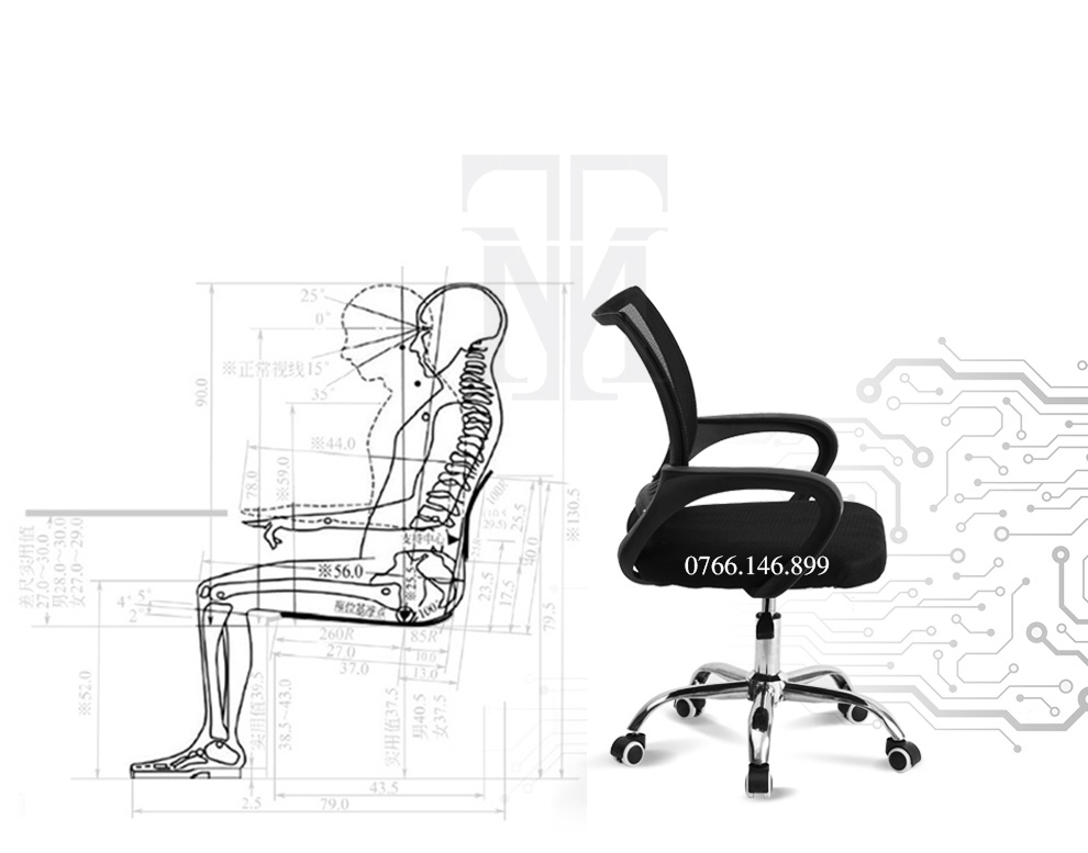 Cấu trúc lưng ghế – Ghế E0-Normaline – Thiên Minh Furniture